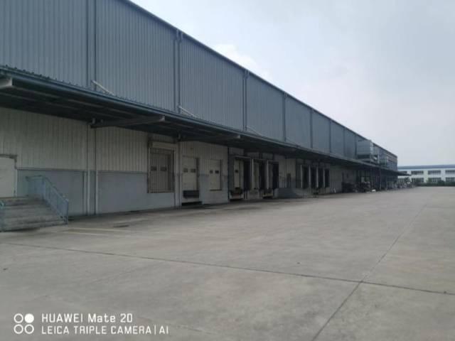 新塘新出物流园区生鲜冷冻仓库.形象好位于国道旁.交通便利
