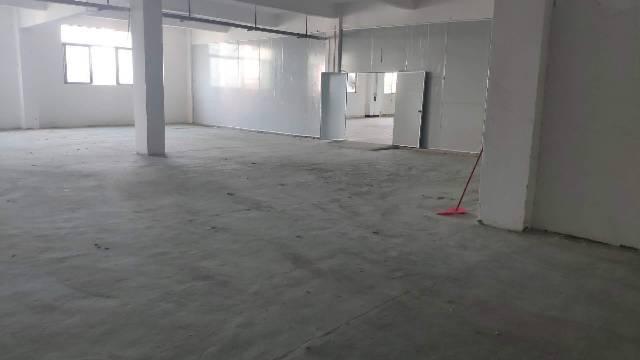 独栋厂房可分租有货梯招工方便