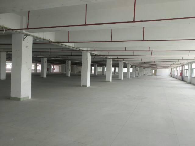 3665平方米标准物流园区仓库出租