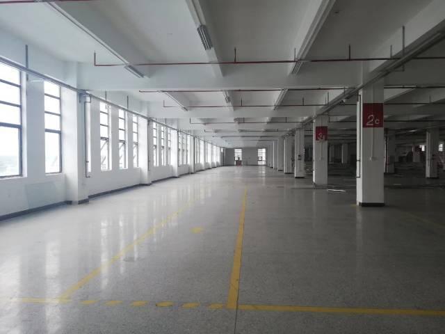 肇庆市鼎湖区标准厂房出租-图2