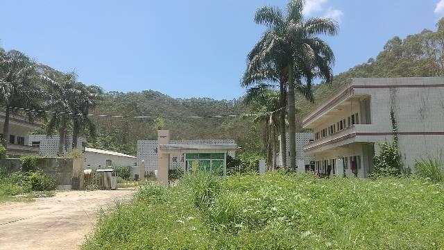 惠州国有证厂房占地6500,建筑三千售1000万。