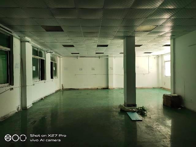 塘厦田心新出标准一楼568㎡带现成办公室水电齐全空地超大-图3