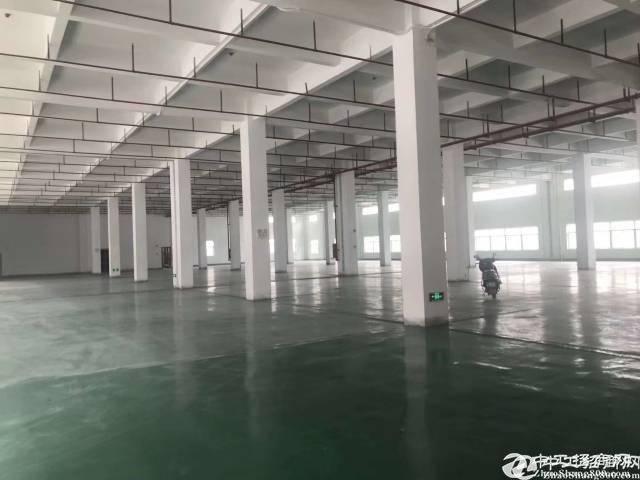 东莞临深片区6000㎡8500㎡12000㎡红本甄选厂房