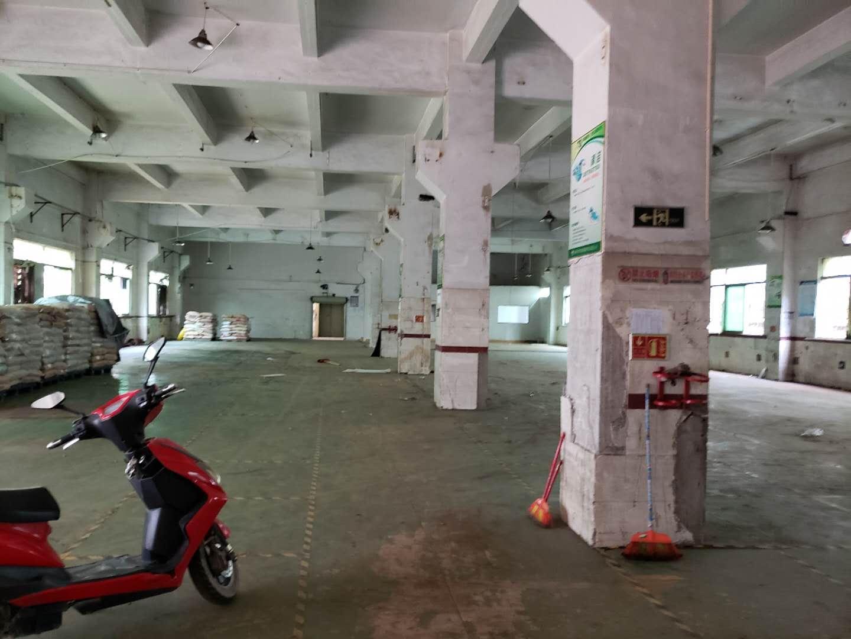 光明长圳一楼500平厂房出租带牛角-图2