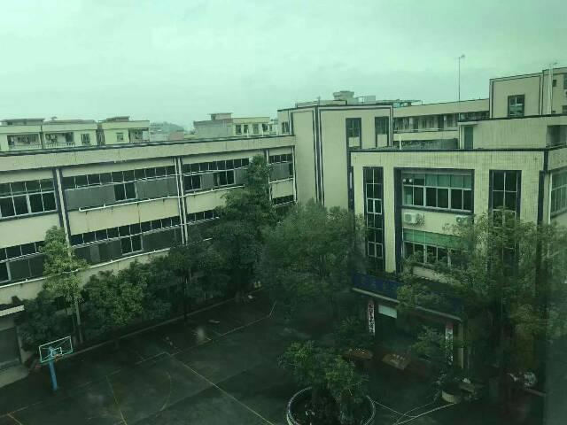 东城原房东新出二楼1300,全新装修地坪漆,豪华现成办公室