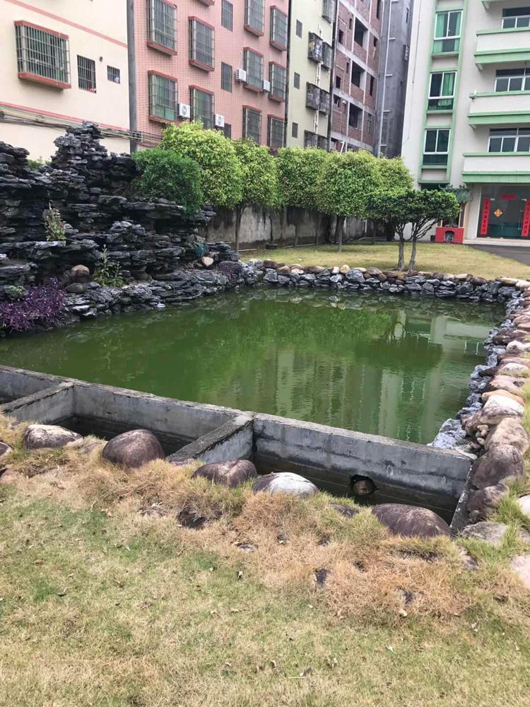 惠州市马安镇花园是独门独院标准厂房