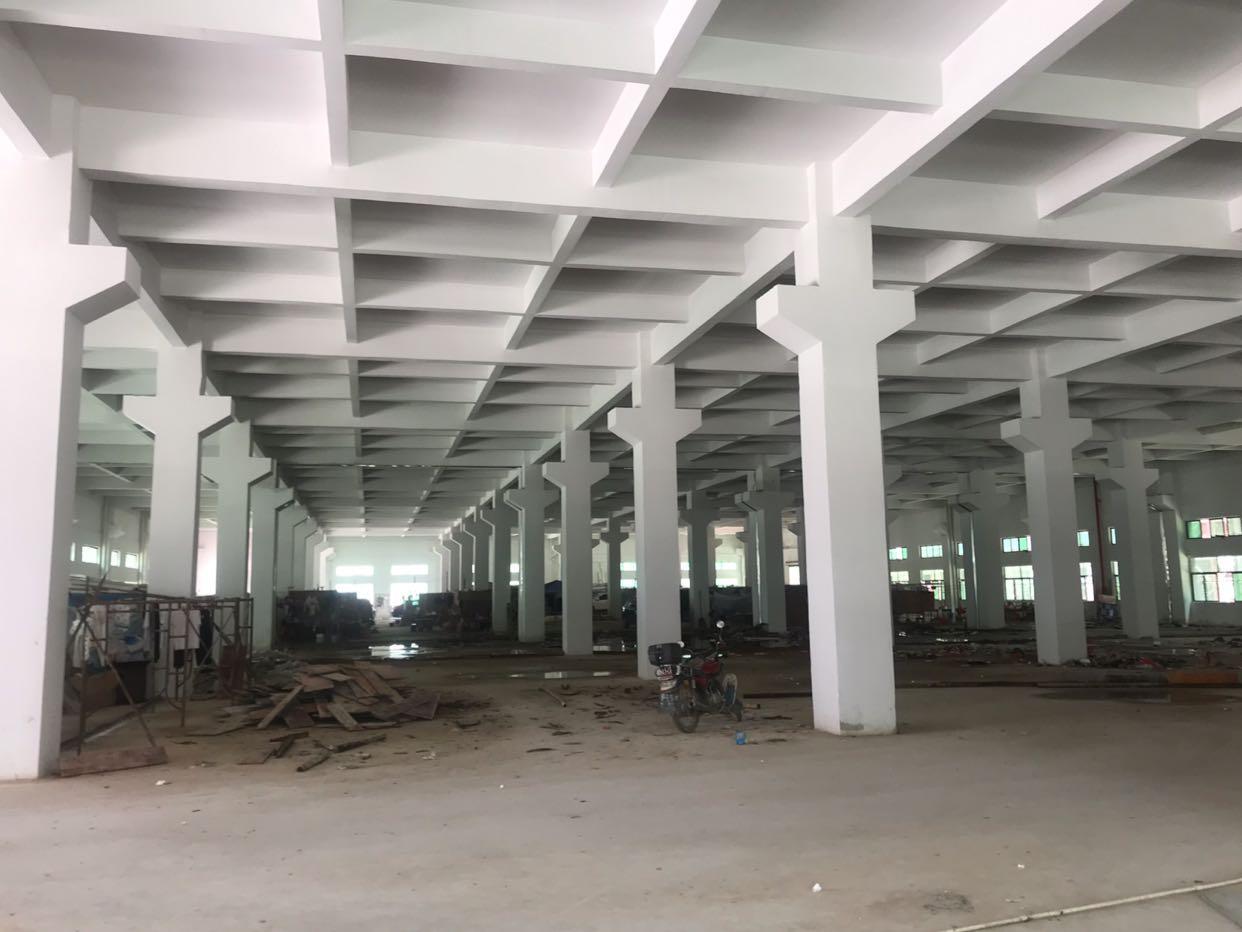 博罗大型工业园招租一楼带牛角