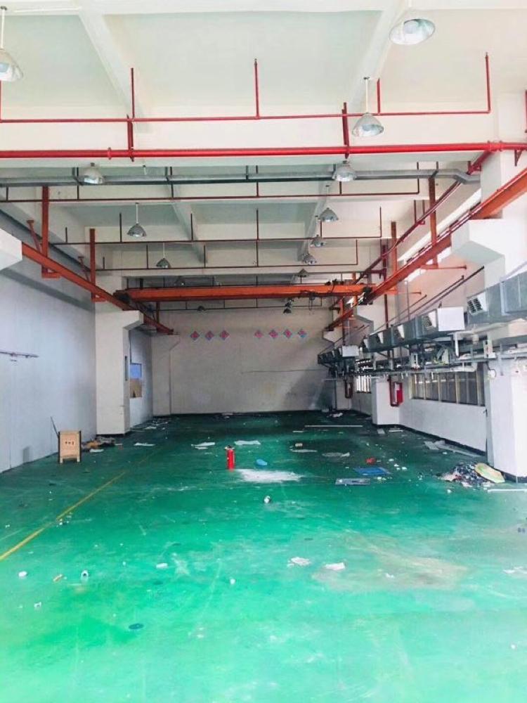 长安镇沿江高速路口附近厦岗新出一楼1700平6米高带行车-图2