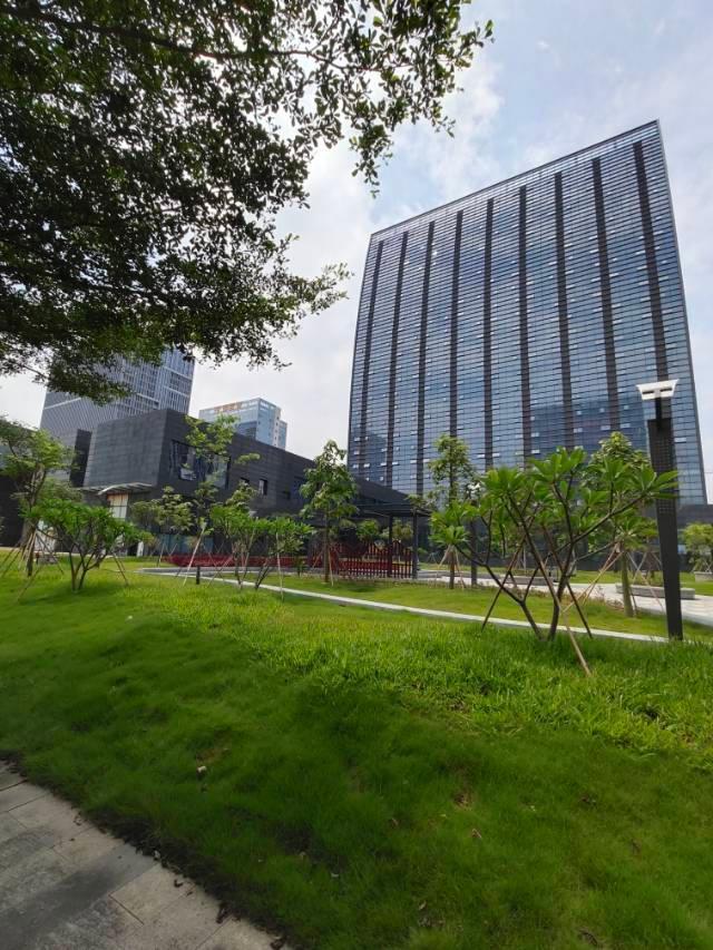 松山湖甲级写字楼,提供记账,注册等项甲级写字楼,可做研发生产