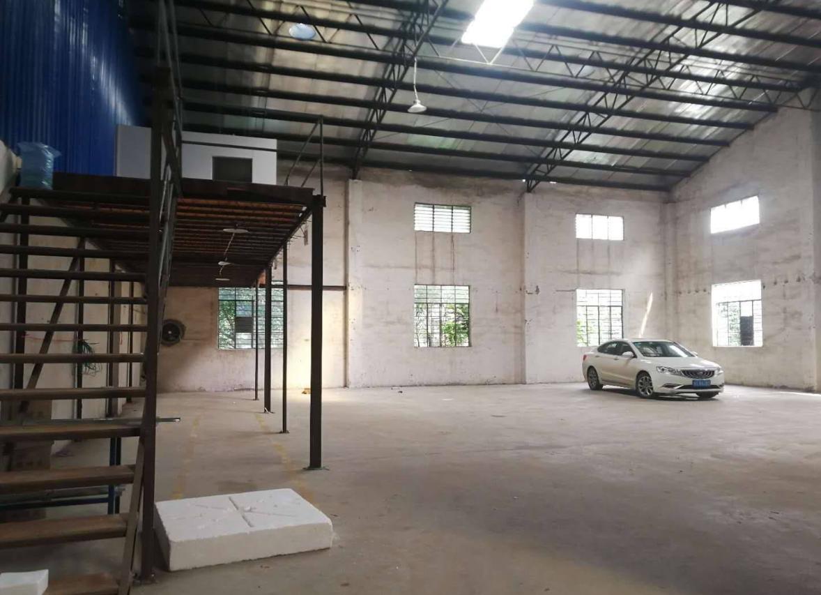塘厦田心新出500平经典独院钢构厂房,滴水7米,原房东直租-图2