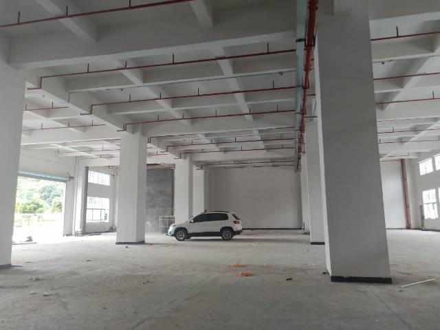 长安街口新出全新重工业独院厂房面积9000平-图4