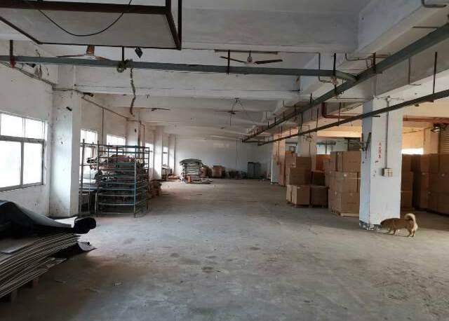 龙岗区横岗街道六约社区六约地铁站300米新出一楼800㎡