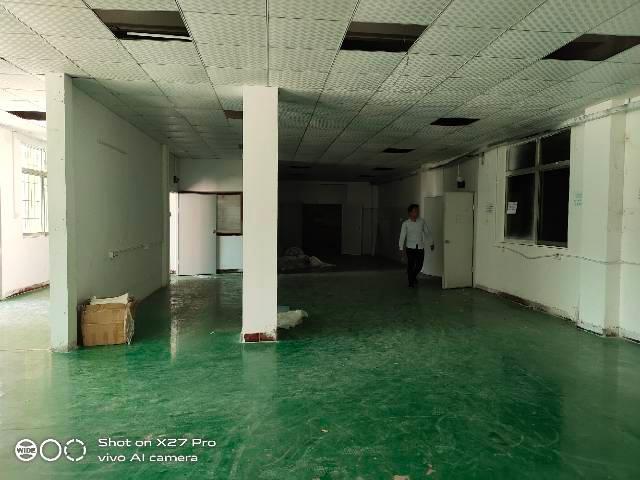 塘厦田心新出标准一楼568㎡带现成办公室水电齐全空地超大-图2
