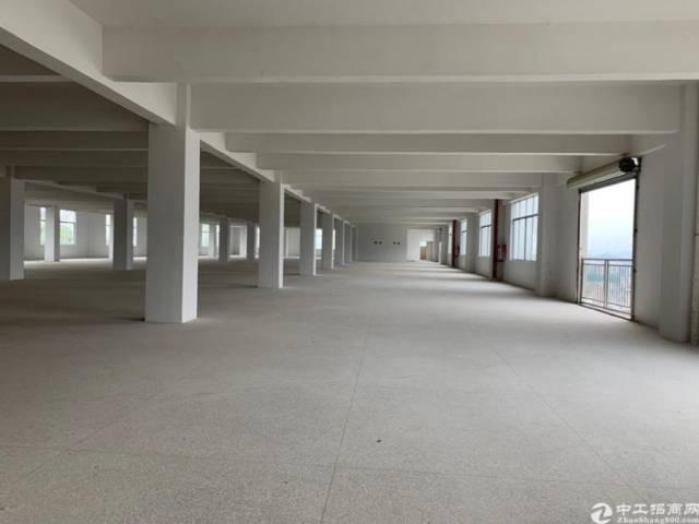 东莞全新厂房2000平起售价格实惠