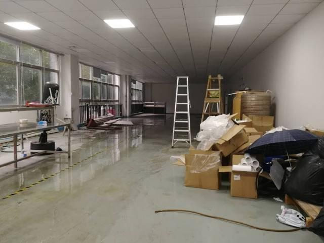 观澜原房东400平厂房全新装修无转让费-图2