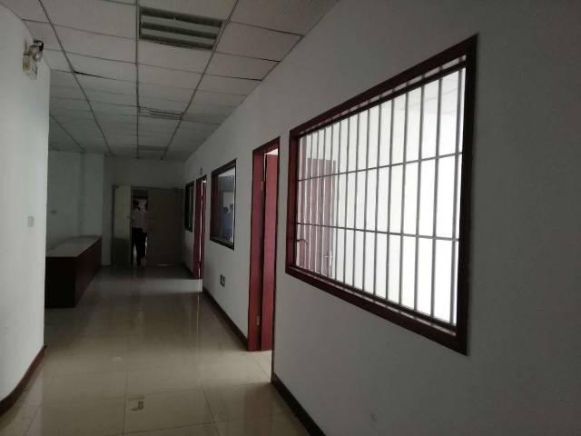 观澜新出原房东红本厂房楼上2760平带装备厂房出租-图2