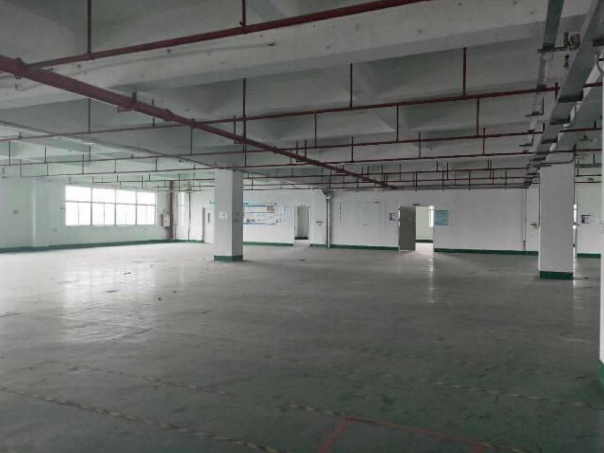 厚街镇南五村新出14000平标准厂房仓库独栋招租