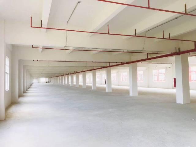 惠州市惠阳区新圩原房东花园式红本独院厂房共6100平方