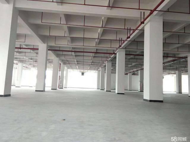 厚街镇宝屯村靠近道滘全新厂房仓库出租6900平方形象好