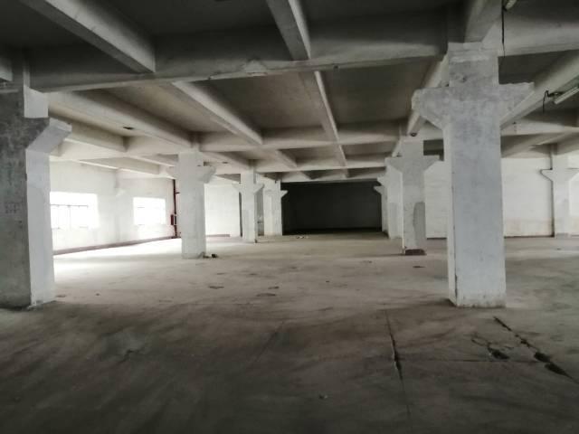 深圳平湖新出厂房16000平带卸货平台两部三吨电梯出租-图4