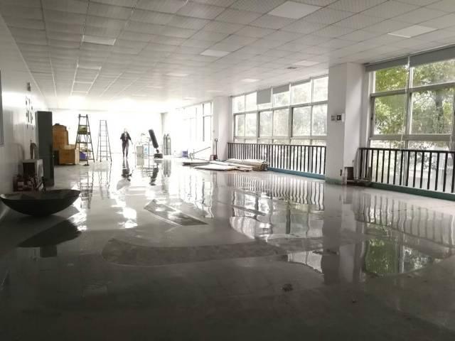 观澜原房东400平厂房全新装修无转让费