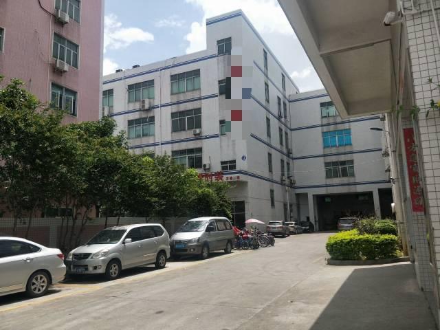 福永凤凰国道边一楼整层2800平米厂房高度6米