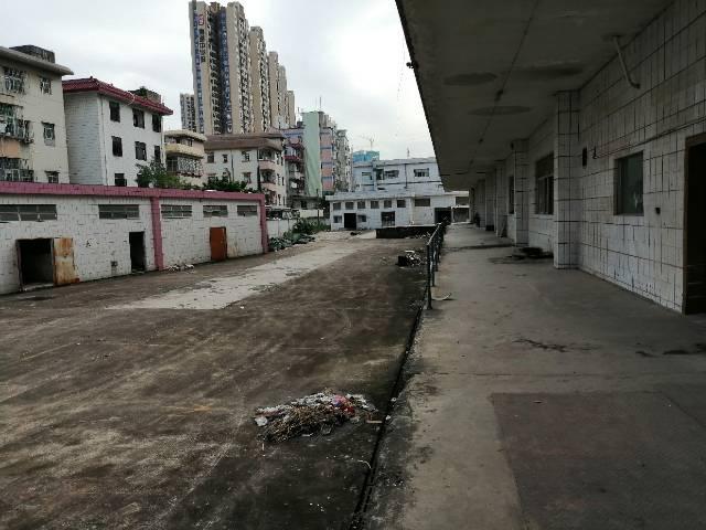 深圳平湖新出厂房16000平带卸货平台两部三吨电梯出租-图3
