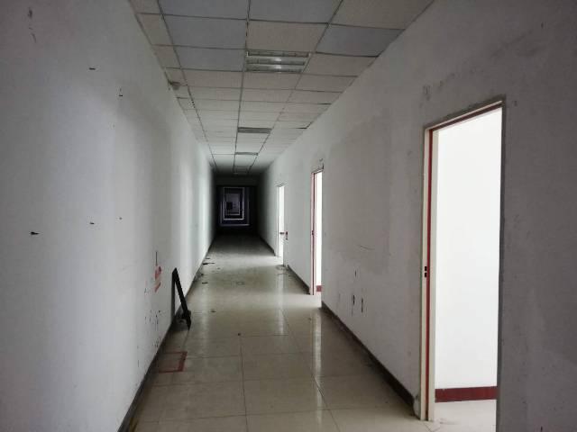 观澜新出原房东红本厂房楼上2760平带装备厂房出租-图5