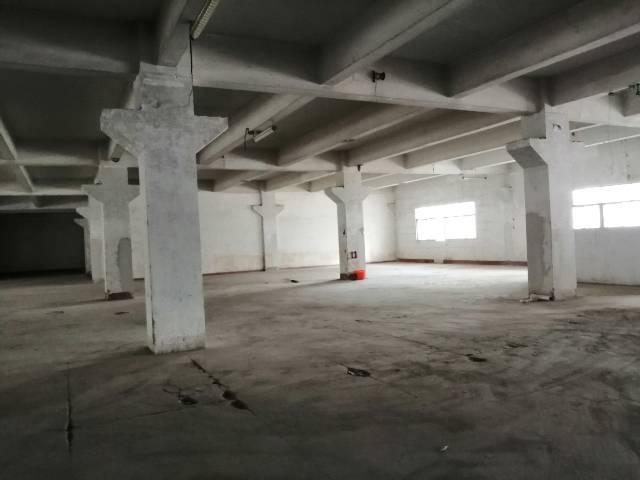 深圳平湖新出厂房16000平带卸货平台两部三吨电梯出租-图5