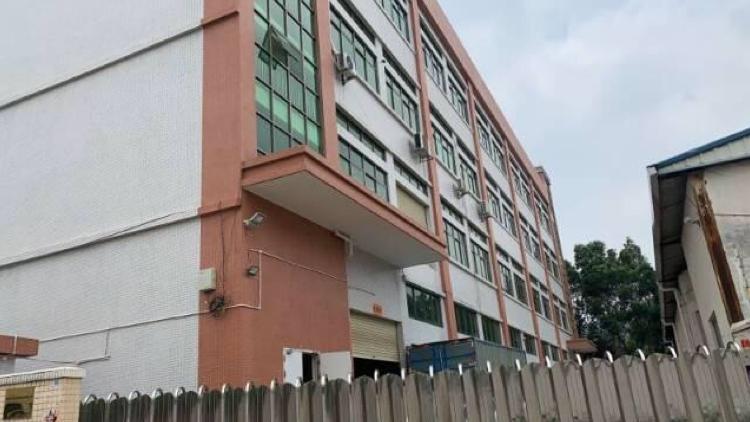 博罗龙溪镇出售占地3800㎡单层不动产权证厂房