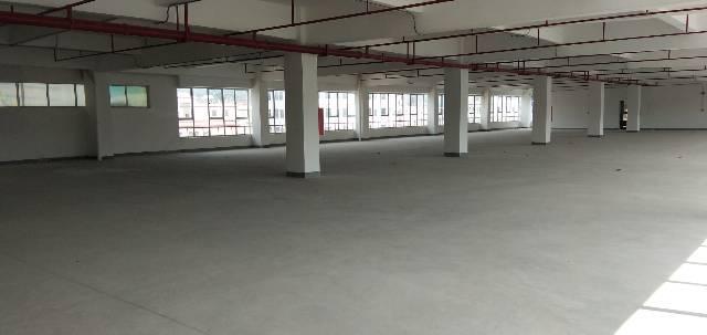 惠州市惠阳三和经济开发区原房东红本标准厂房3万平方可办理环评