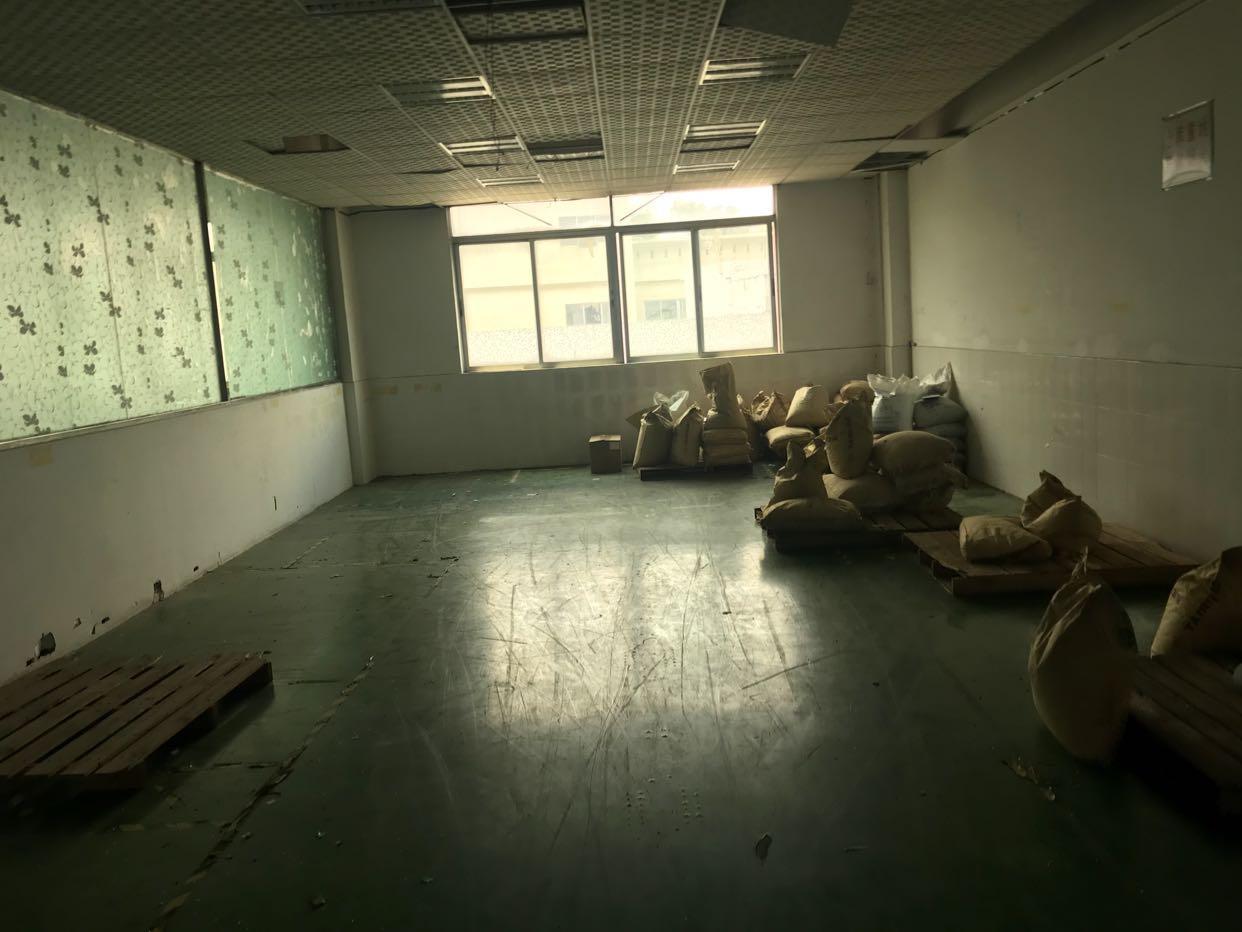 横岗荷坳1000平厂房原房东直租-图2