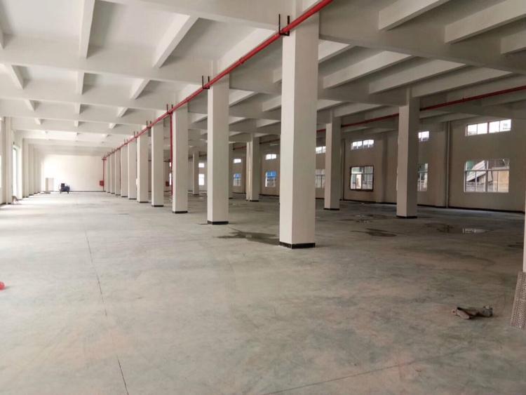 清溪镇三中房东新建厂房一楼3100平方招租可分租
