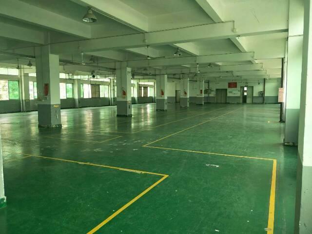 温塘环城路边工业园一整层4000平方出租