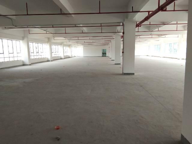 惠州市惠阳三和经济开发区原房东红本标准厂房3万平方可办理环评-图2