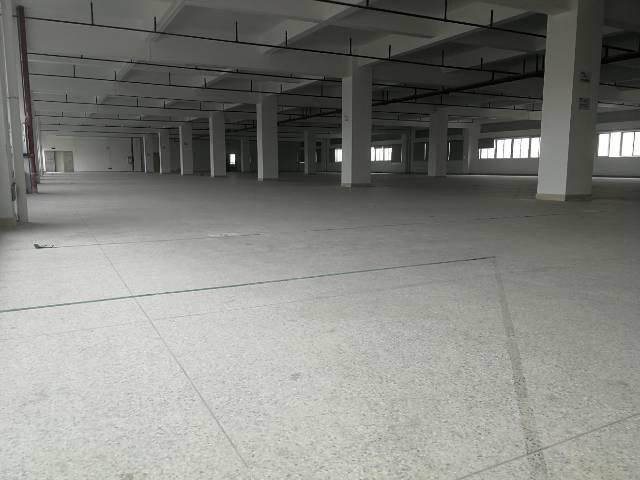 桥头镇标准厂房五楼出租整层4250平方