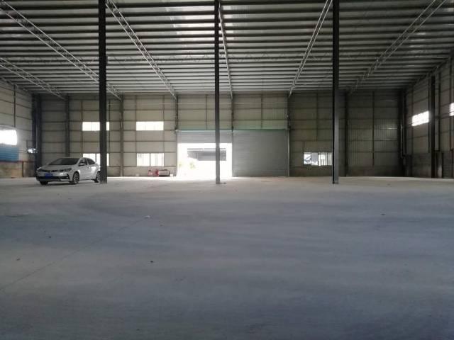 塘厦新出原房东独院2800平9米带牛角钢结构构