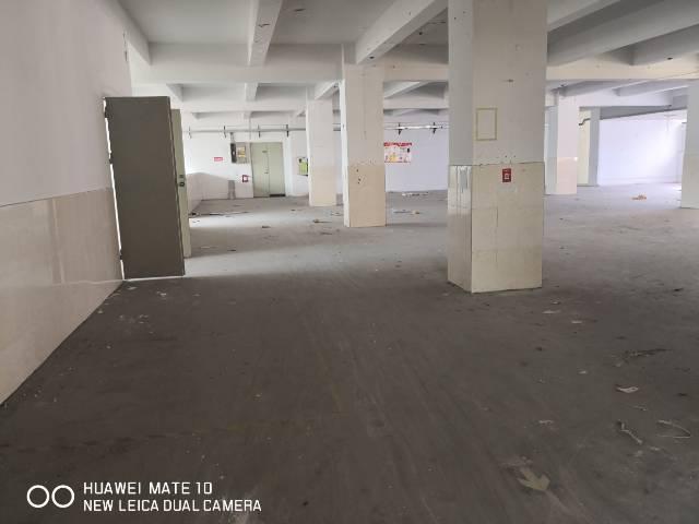 横岗塘坑地铁站附近二楼1000平标准厂房招租-图2