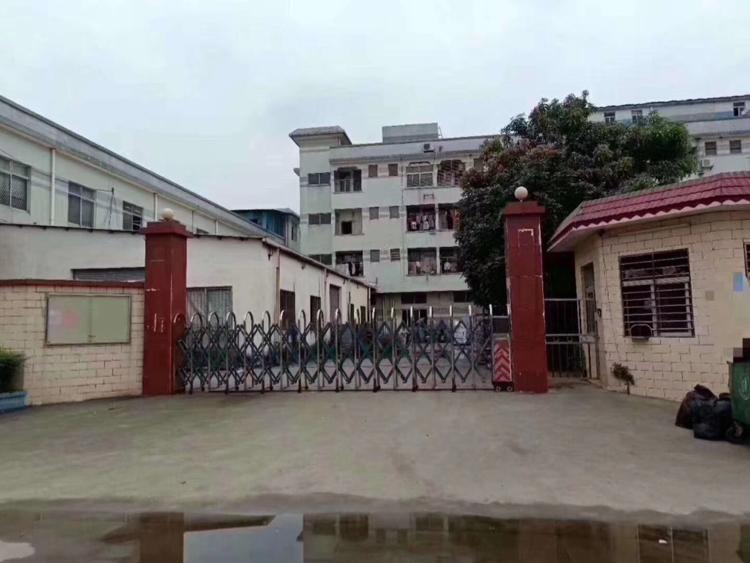 虎门镇,沿江高速出口附近