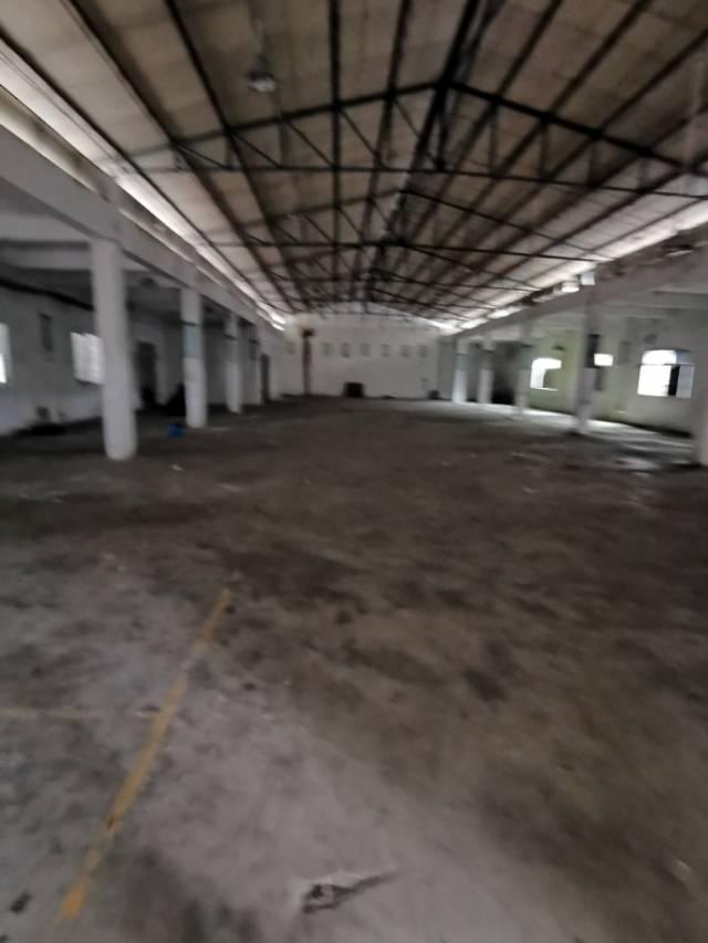 黄江黄牛铺原房东独院钢构可做污染行业8000平方单一层可分租-图2