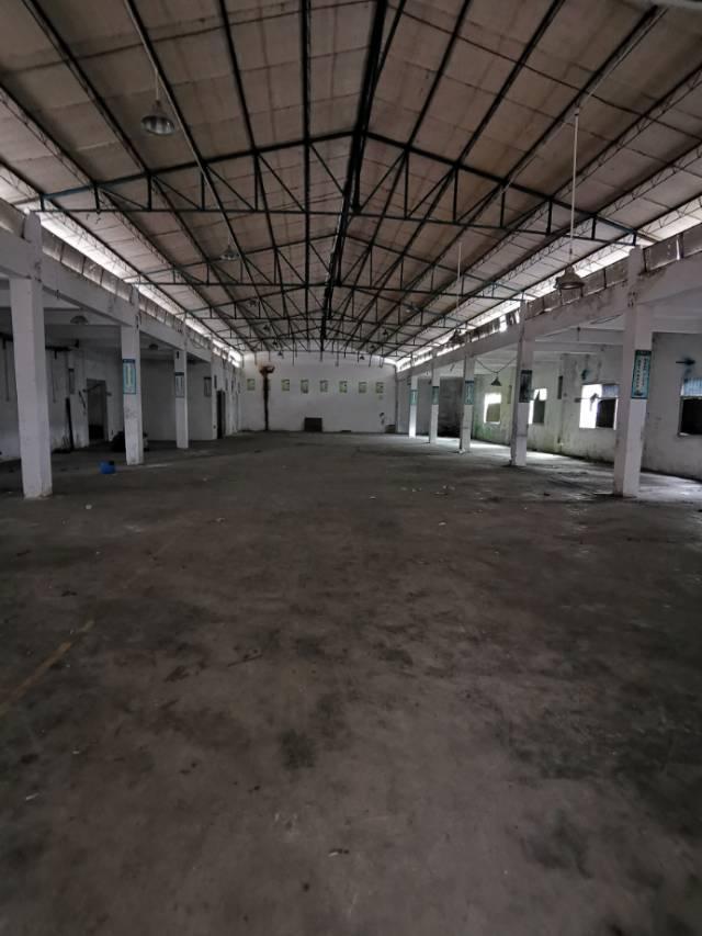 黄江黄牛铺原房东独院钢构可做污染行业8000平方单一层可分租-图6
