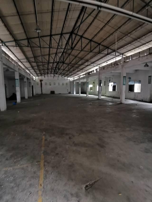 黄江黄牛铺原房东独院钢构可做污染行业8000平方单一层可分租-图4