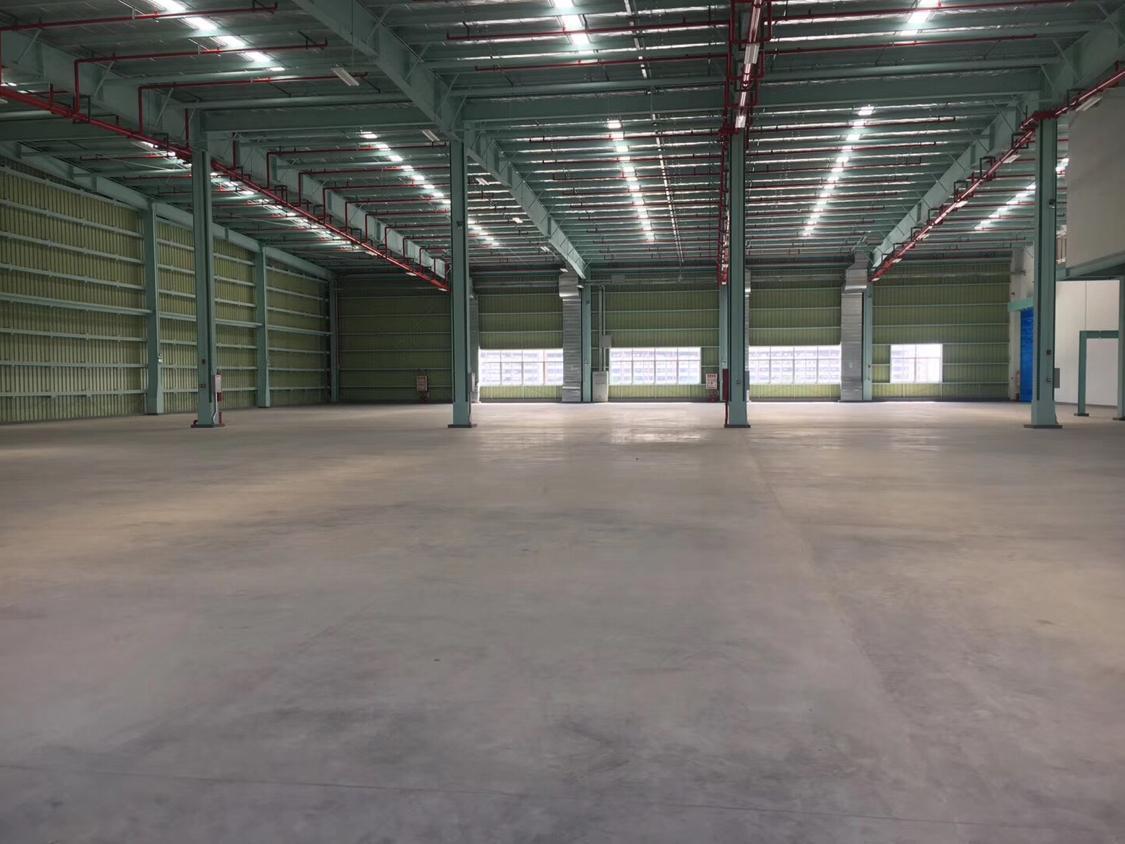 仲恺高新区沥林主干道边3800平全新钢构厂房出售