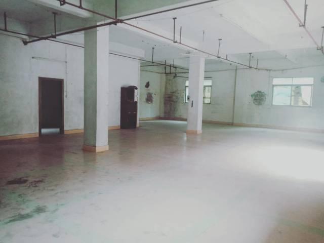 东莞市茶山镇独栋1000平标准厂房