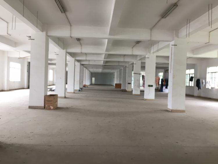 坪山大工业区独门独院物流、快递仓库出租