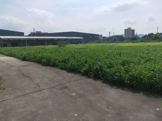 大型工业园区内国有土地30000平独院!