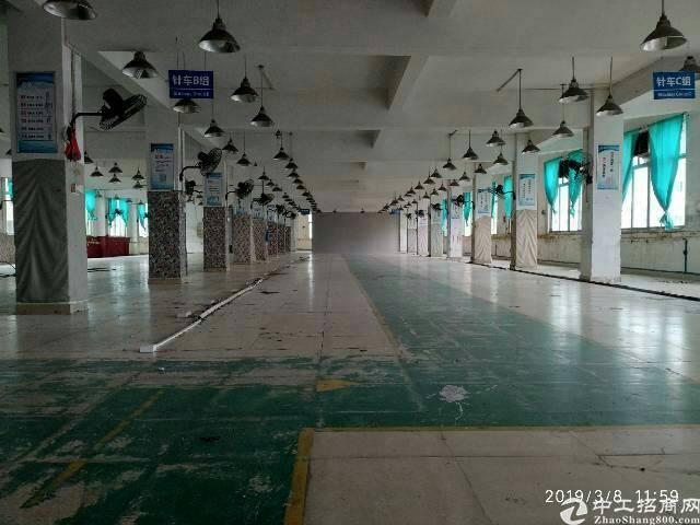 狮岭镇标准万博app官方下载出租1100平方水电齐全