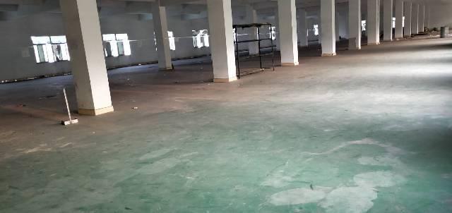 惠州汝湖新出厂房1350平租金10元