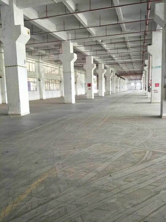 东莞高埗镇原房东仓库 占地60亩建筑面积约19800平方-图3