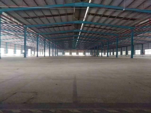 龙岗新出独院钢构厂房8900平高度9米低价出租-图5